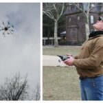 Taking Flight: Student Designs Robot to Observe Bird Patterns