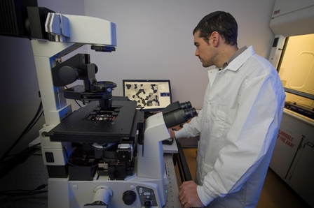 Bacterial Cell Research to Advance with $1.2 million National Science Foundation Award to Rutgers–Camden Biology Professor