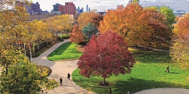 Rutgers–Camden to Offer Health Sciences Degree Program
