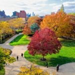 Rutgers University–Camden Earns National Carnegie Community Engagement Classification
