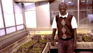 Prof. Simeon Kotchoni stands in the greenhouse lab at Rutgers-Camden.