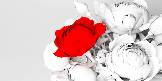 Roses are Red? Rutgers–Camden Researcher Explores Complex Relationship Between Color Perception and Memory