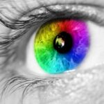 How Do We Remember Colors? Categories Influence Color Memory, Says New Research