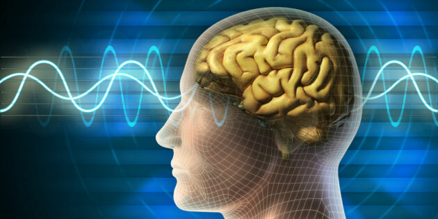 Rutgers–Camden Researchers Discover Two New Wave Bands for EEG