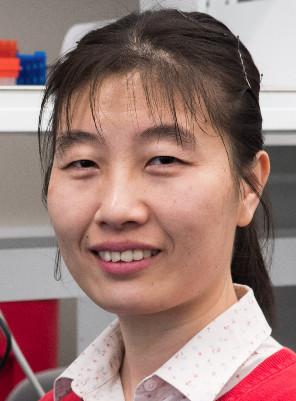 Professor Xingyun Qi