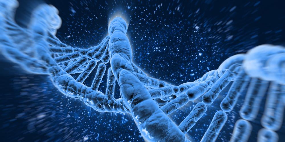 Image of DNA molecules